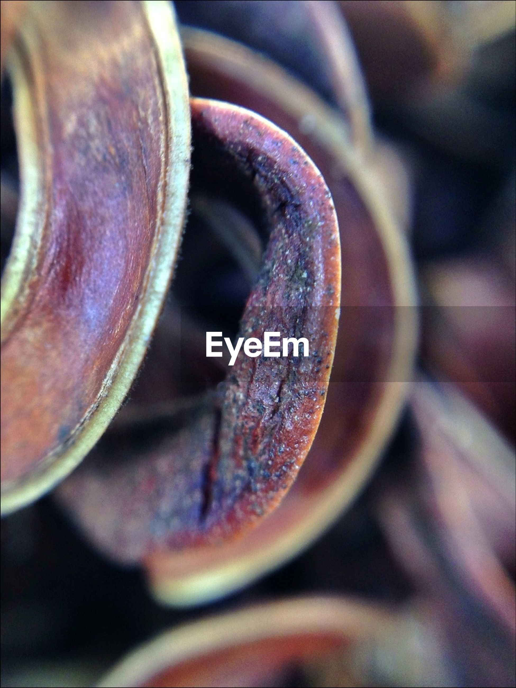 close-up, metal, selective focus, focus on foreground, rusty, metallic, indoors, old, still life, part of, detail, machine part, extreme close-up, no people, equipment, wheel, day, industry, cropped, old-fashioned