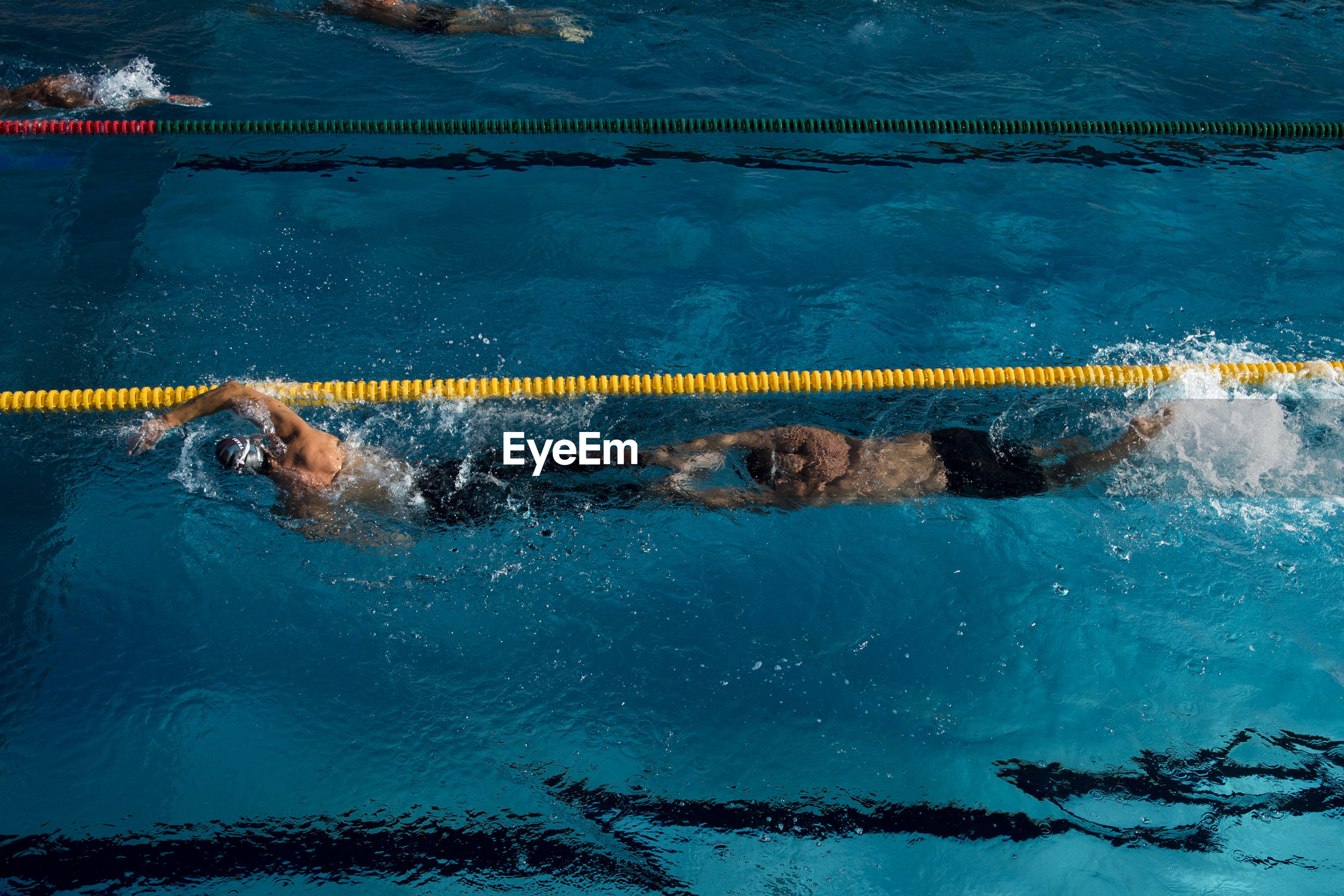 High angle view of male athletes swimming in pool