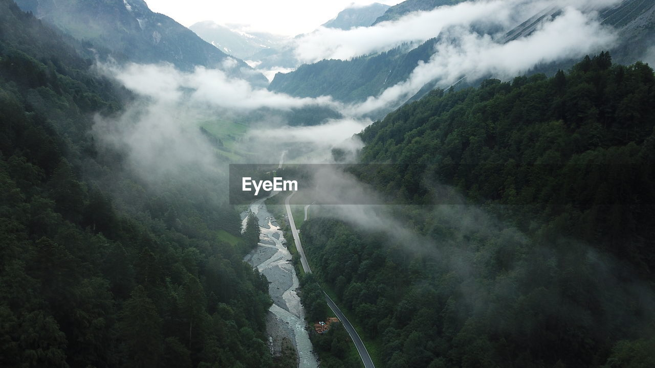 Aerial view of river flowing through forest