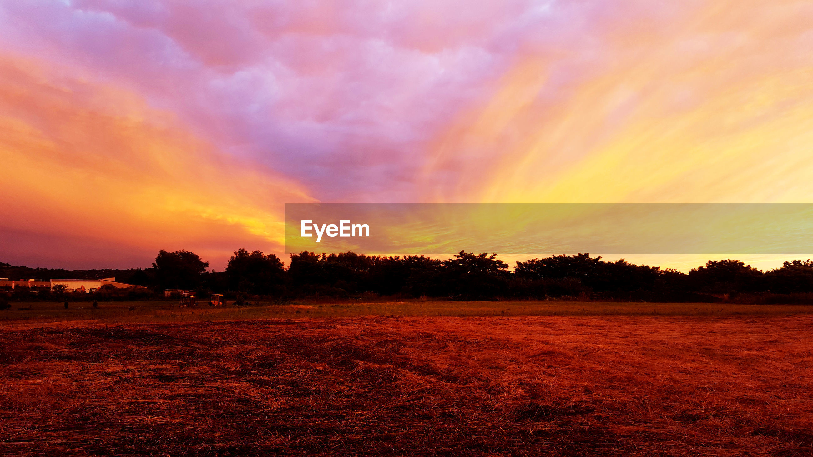 sunset, tranquility, beauty in nature, tranquil scene, sky, scenics, nature, orange color, tree, no people, landscape, field, cloud - sky, silhouette, agriculture, outdoors, rural scene, day