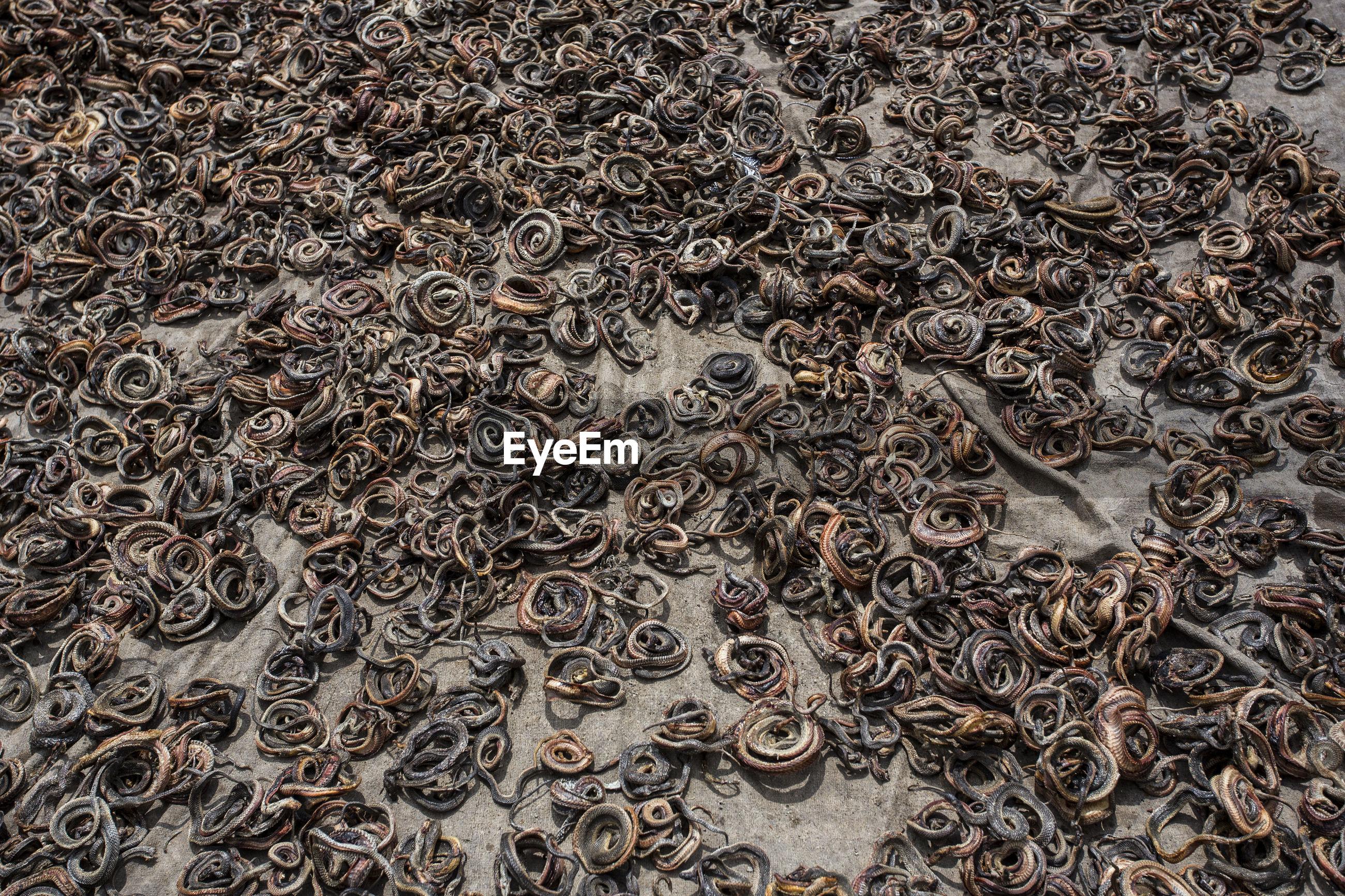 Full frame shot dead snakes on textile