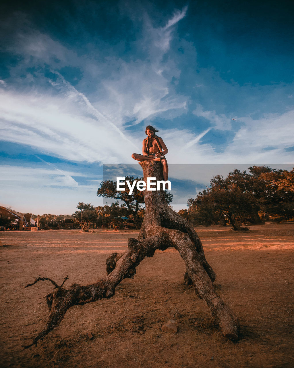 Man Sitting On Dead Tree Against Sky