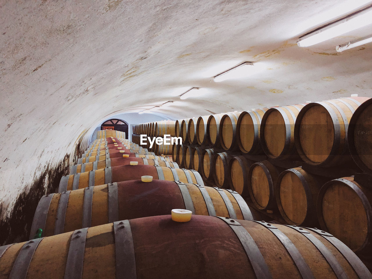 Row of wine barrels in wine cellar