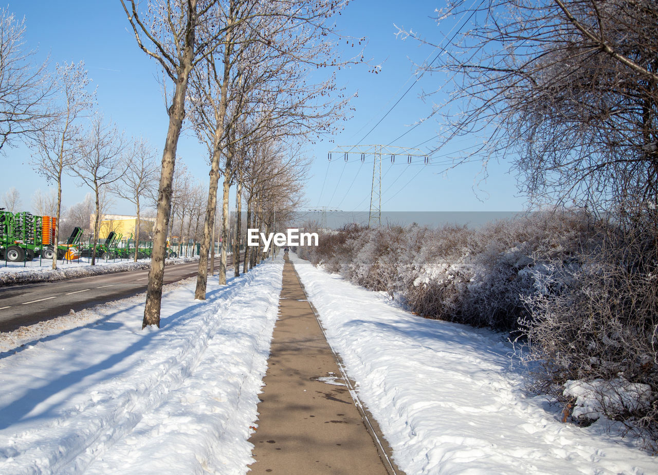 SNOW COVERED ROAD AMIDST TREES AGAINST CLEAR SKY