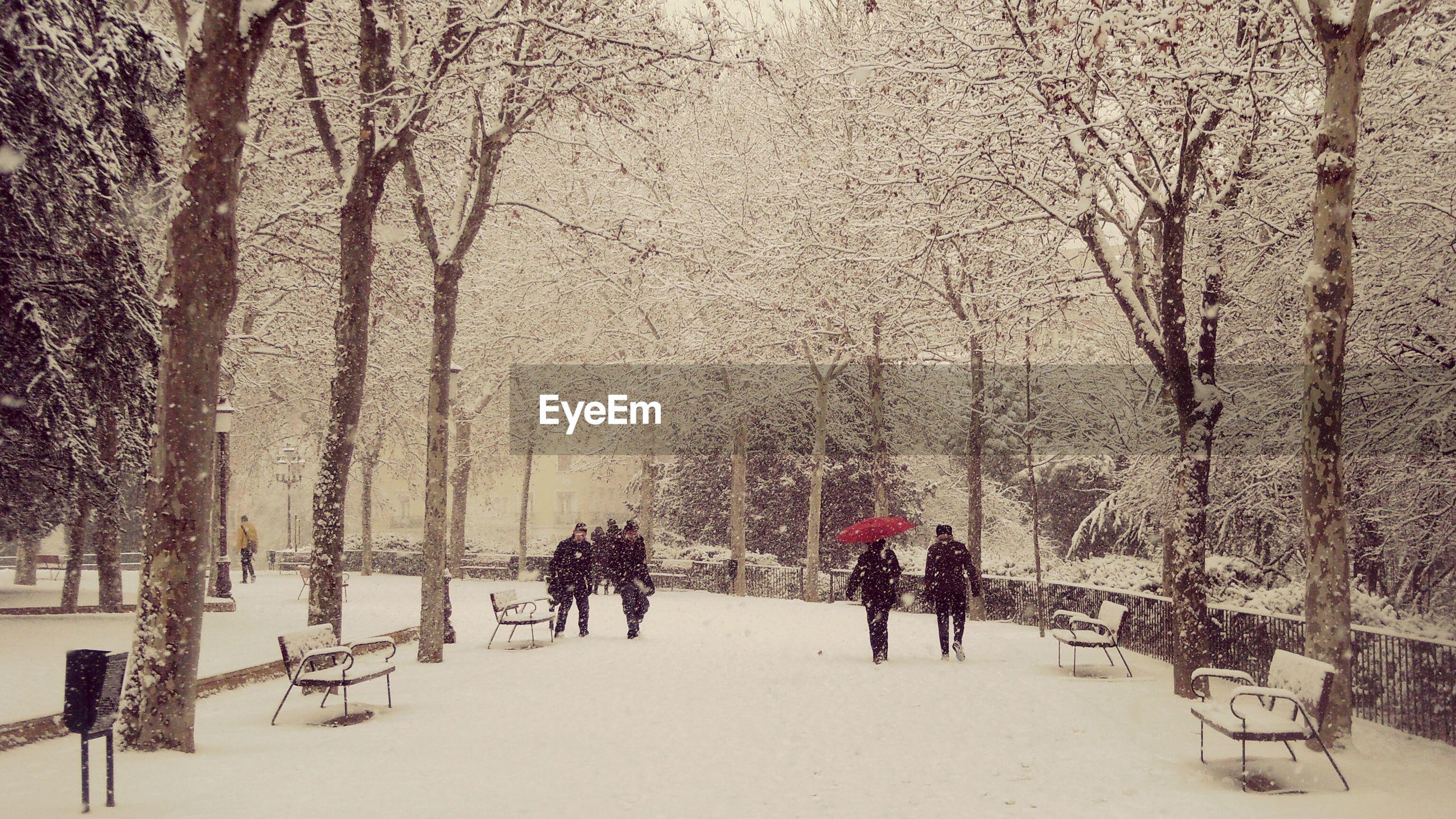 People walking in park during snowfall