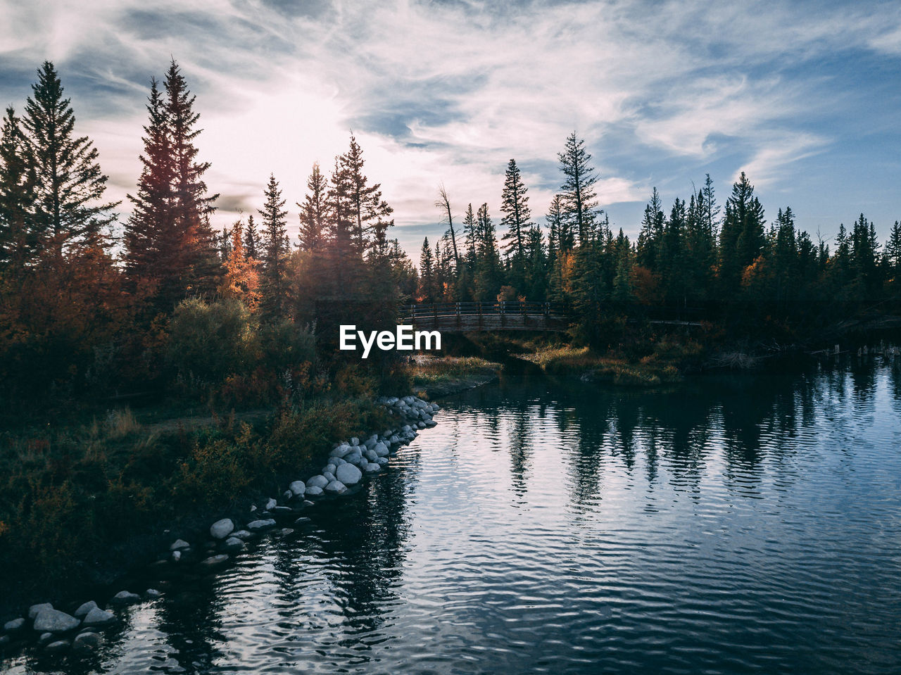 SCENIC VIEW OF RIVER IN FOREST DURING SUNSET