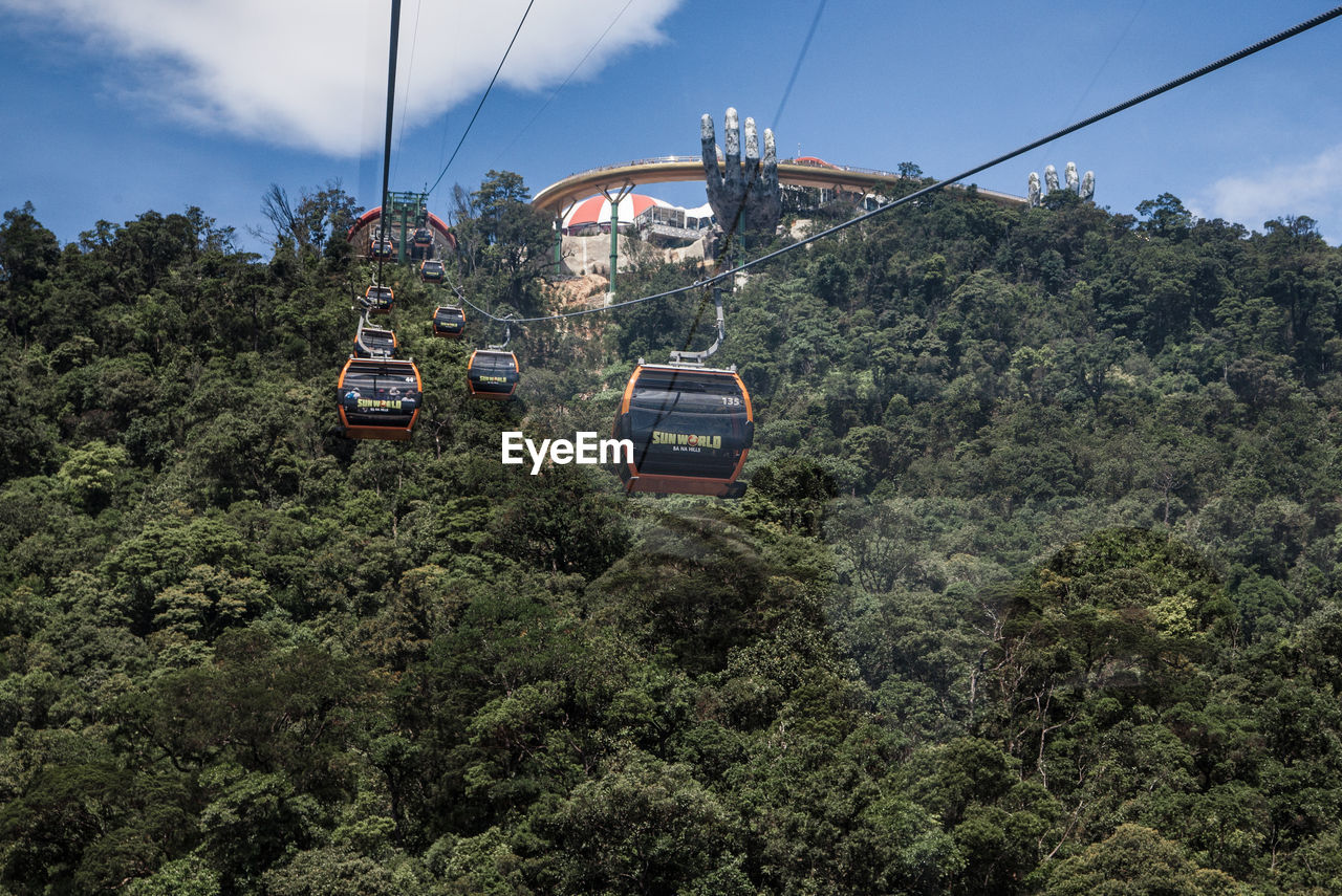 transportation, plant, tree, mode of transportation, sky, cable car, nature, overhead cable car, cable, cloud - sky, day, growth, no people, green color, land vehicle, travel, outdoors, architecture, built structure, foliage