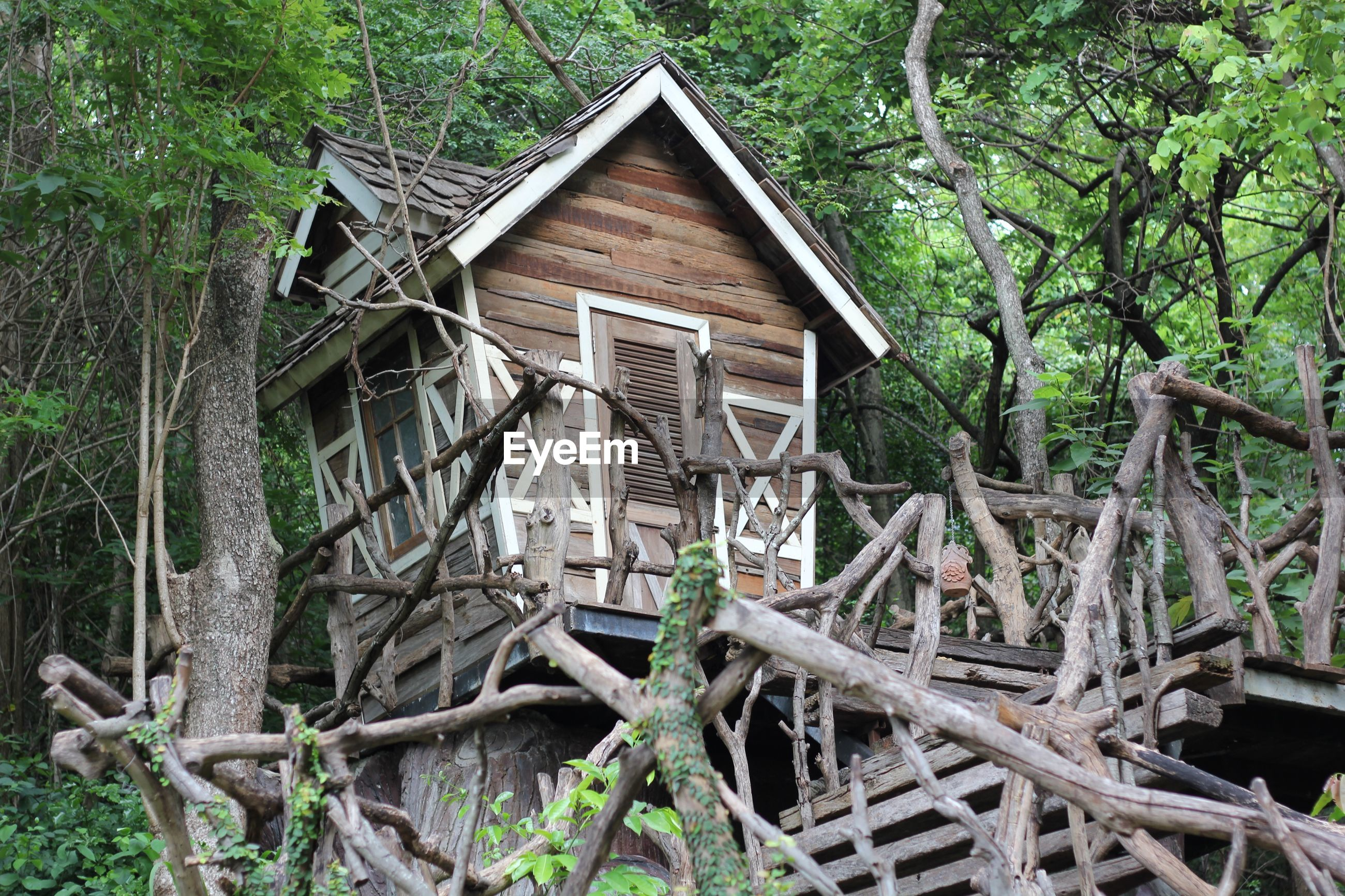 Wooden house against trees in forest