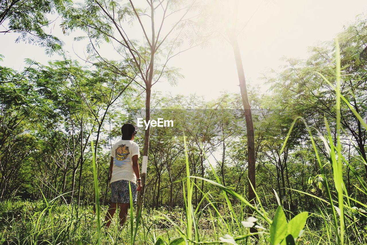plant, tree, real people, rear view, leisure activity, nature, growth, casual clothing, land, people, lifestyles, day, beauty in nature, green color, two people, women, forest, standing, sky, adult, positive emotion, outdoors, couple - relationship
