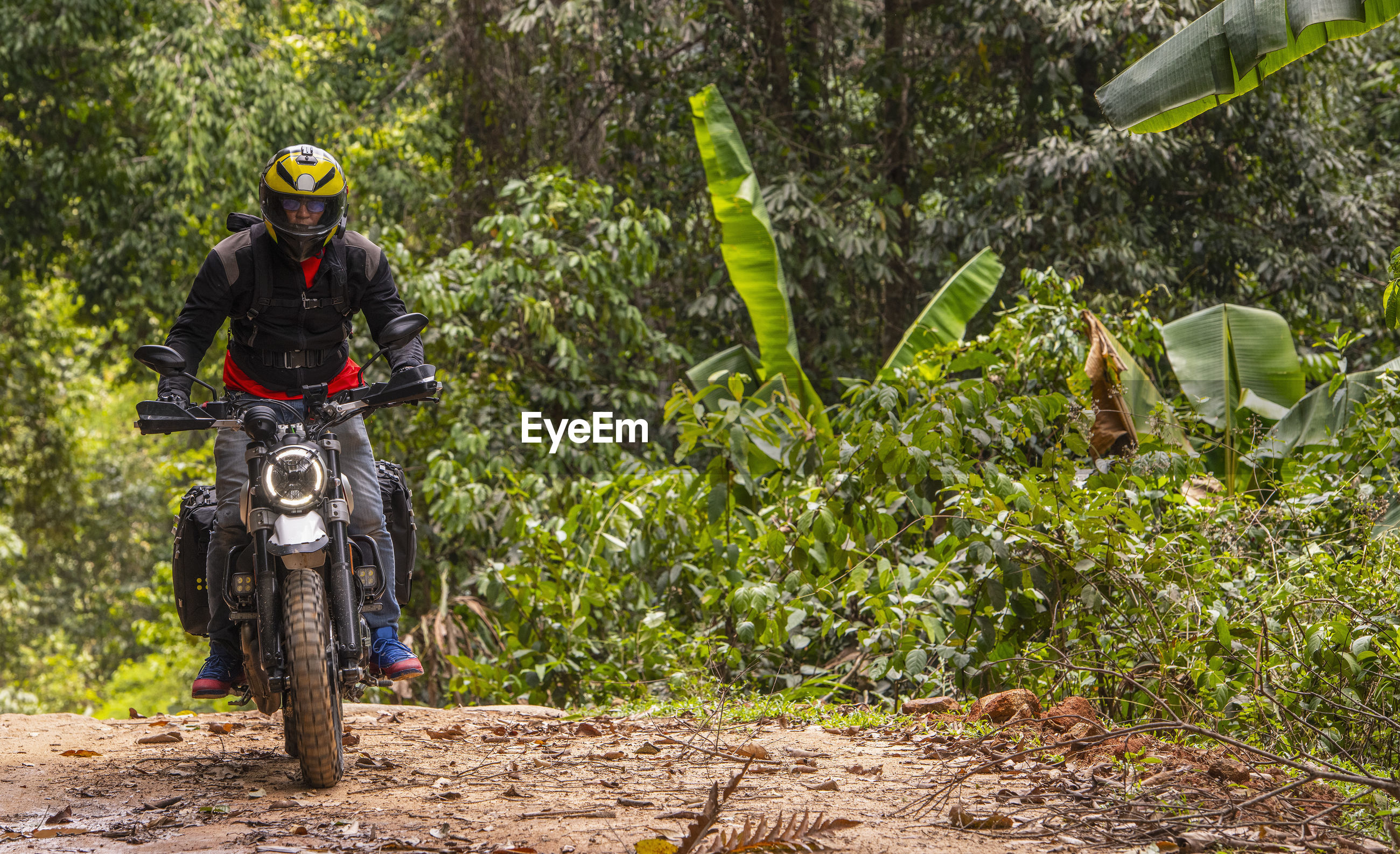 MAN RIDING MOTORCYCLE ON ROAD AMIDST TREES