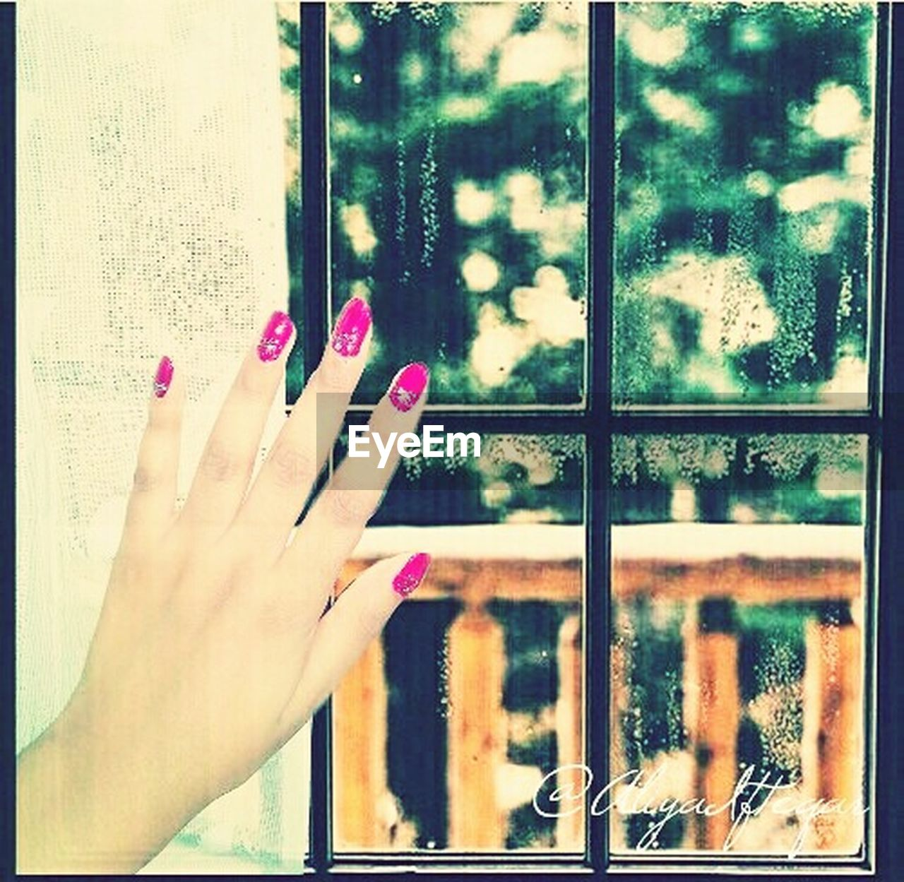 window, nail polish, human body part, one person, human hand, women, one woman only, day, close-up, real people, outdoors, adult, building exterior, only women, adults only, fingernail, tree, one young woman only, people