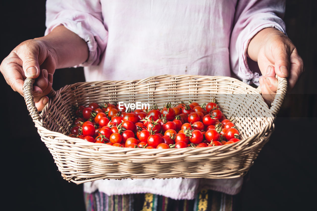 food, food and drink, one person, basket, fruit, freshness, midsection, container, human hand, healthy eating, holding, hand, wicker, real people, red, wellbeing, vegetable, agriculture, human body part, ripe