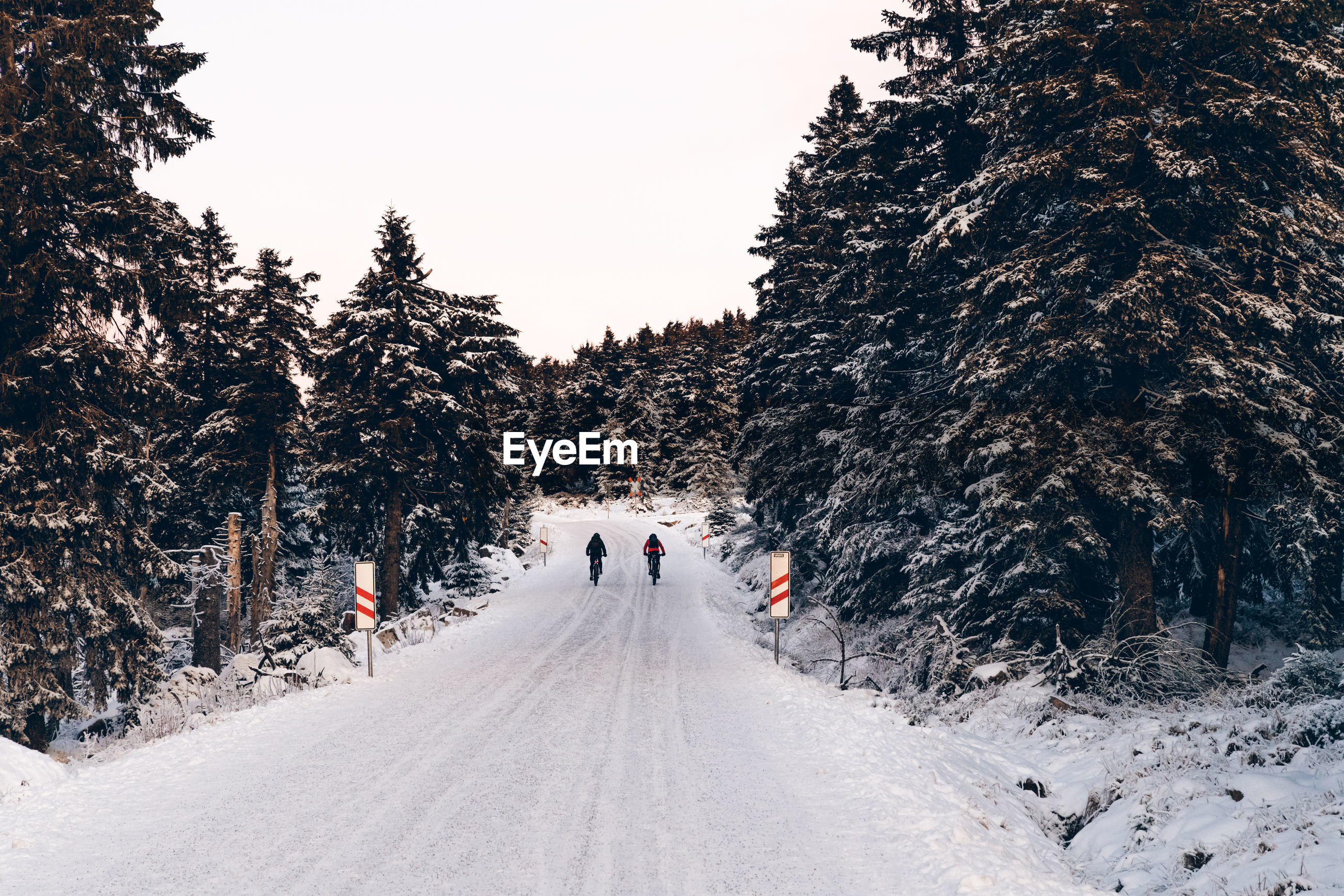 Rear view of people walking on snow covered road