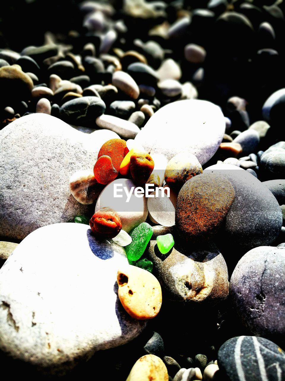 pebble, beach, nature, shore, sand, pebble beach, rock - object, outdoors, day, close-up, no people, full frame, water, beauty in nature