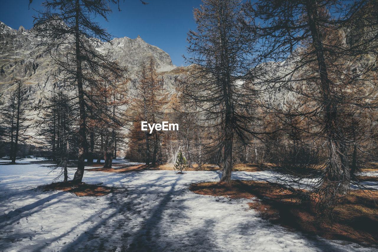 Fall in the ecrins national park - un automne dans le parc national des ecrins, hautes alpes, france
