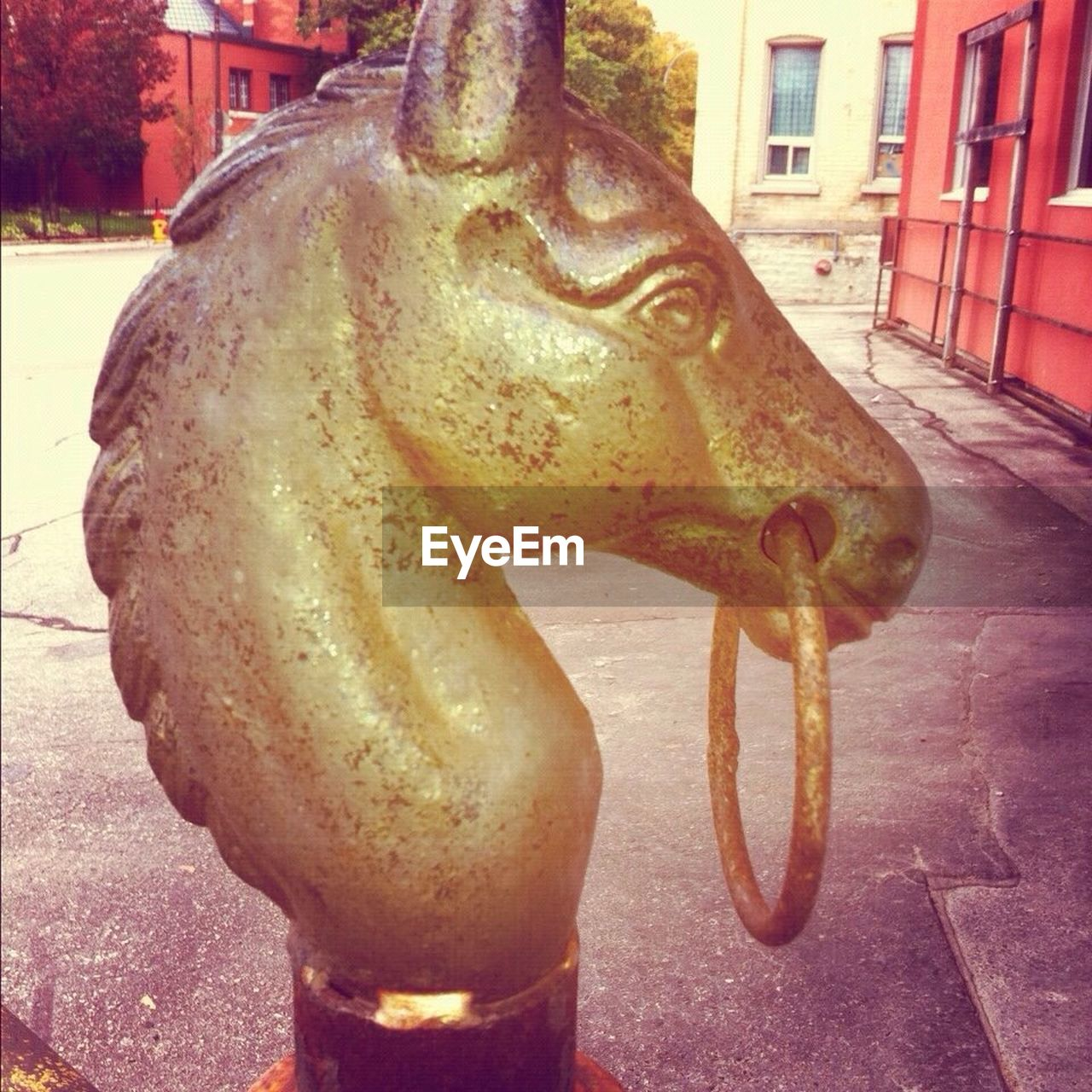 animal representation, no people, architecture, outdoors, close-up, built structure, building exterior, sculpture, statue, day, food, city