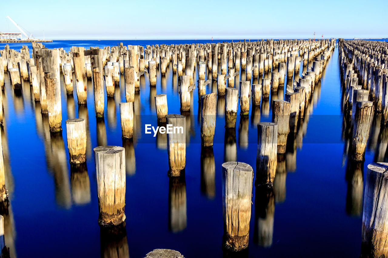 no people, in a row, blue, wood - material, nature, sky, day, repetition, large group of objects, selective focus, side by side, built structure, water, wooden post, abundance, outdoors, order, illuminated, pattern