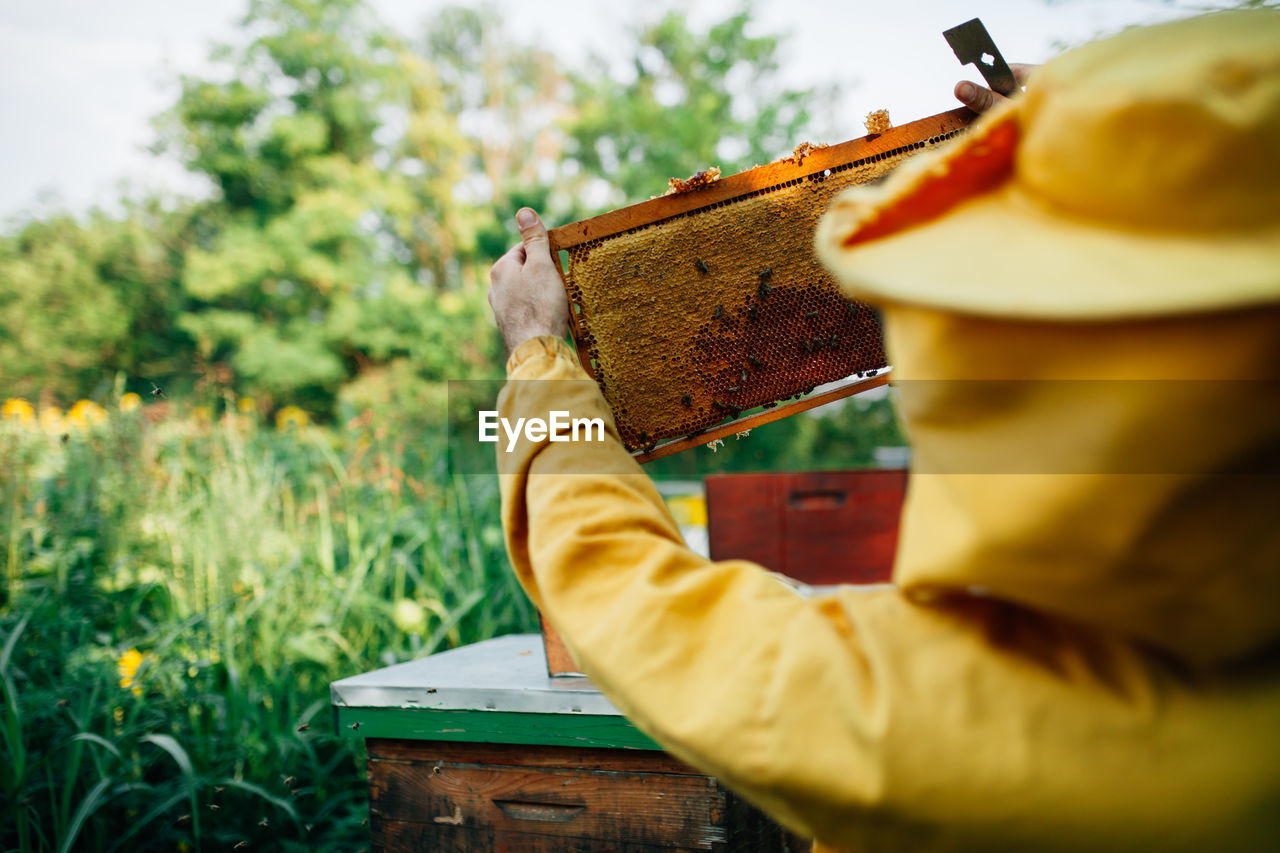 Close-Up Of Man Holding Beehive Against Plants