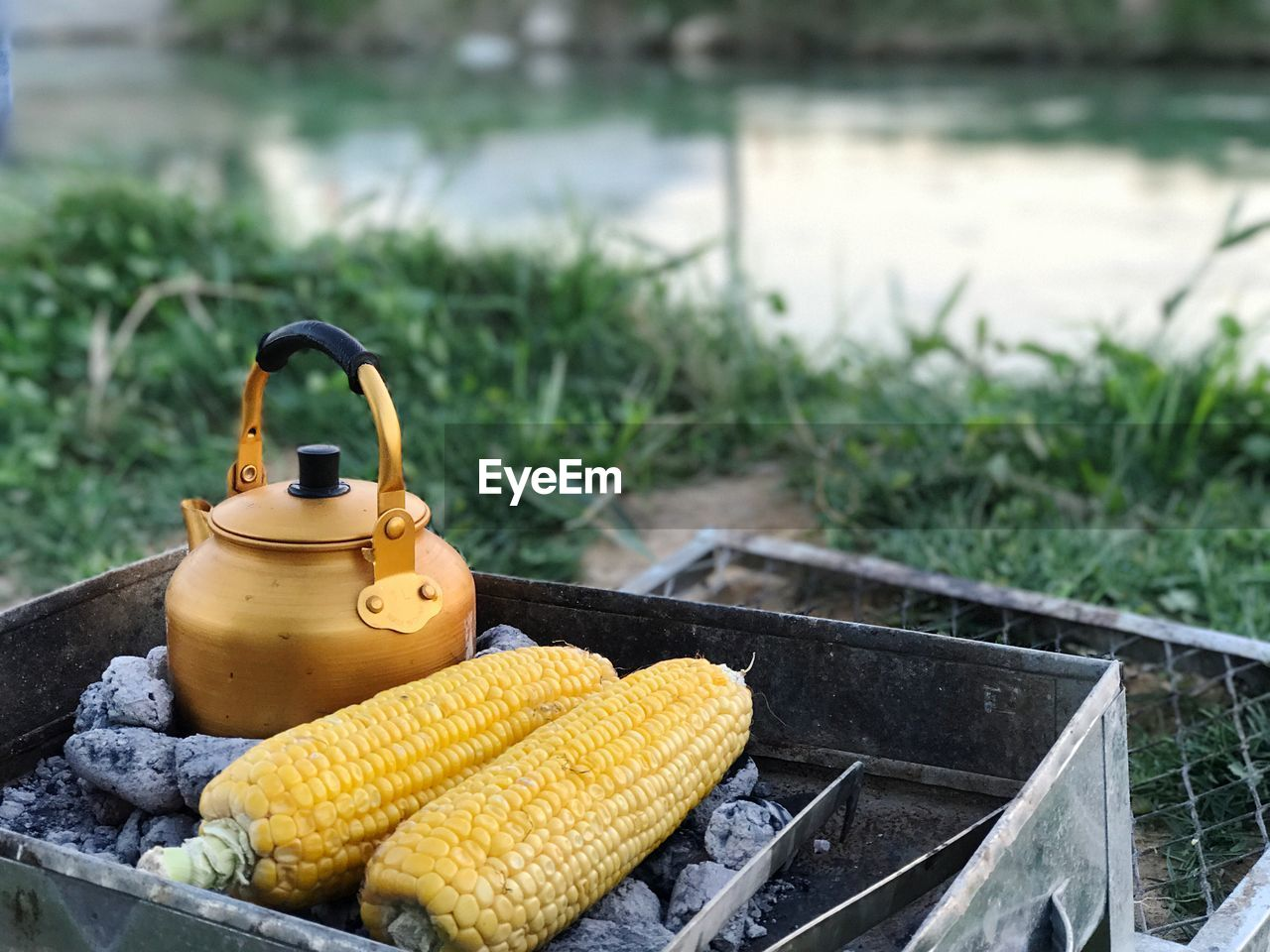 Close-up of corn with kettle on barbecue at lakeshore
