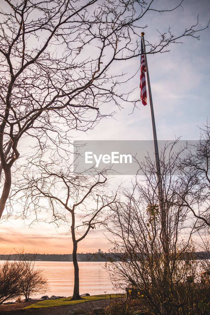 SCENIC VIEW OF LAKE AGAINST BARE TREES