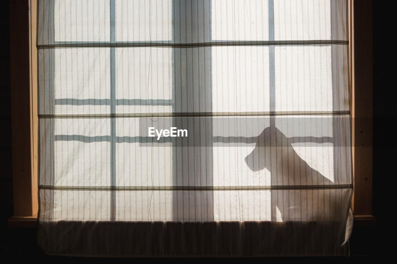 Shadow Of Curtain On Window