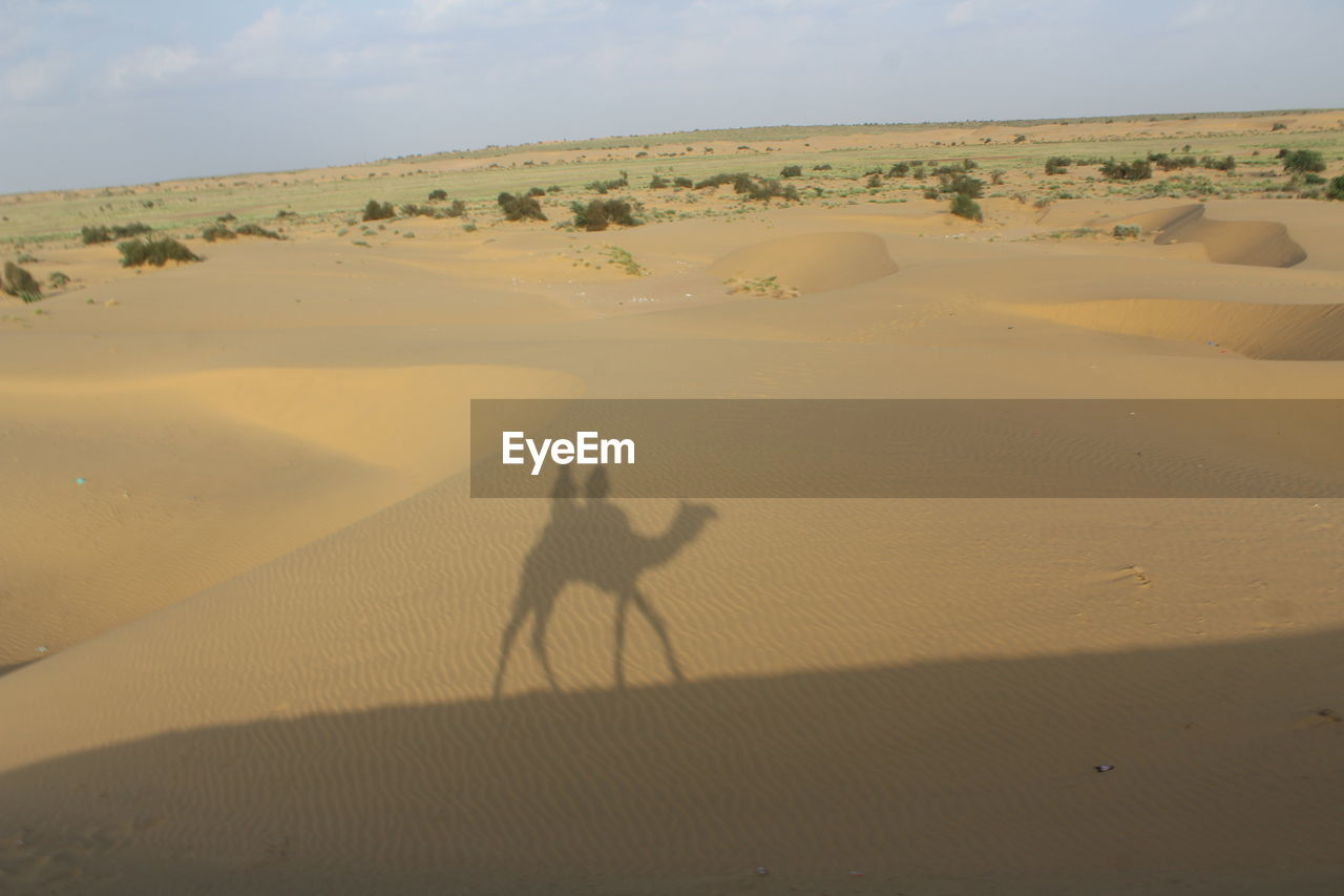 Shadow Of People Riding On Camel Seen In Sand At Desert