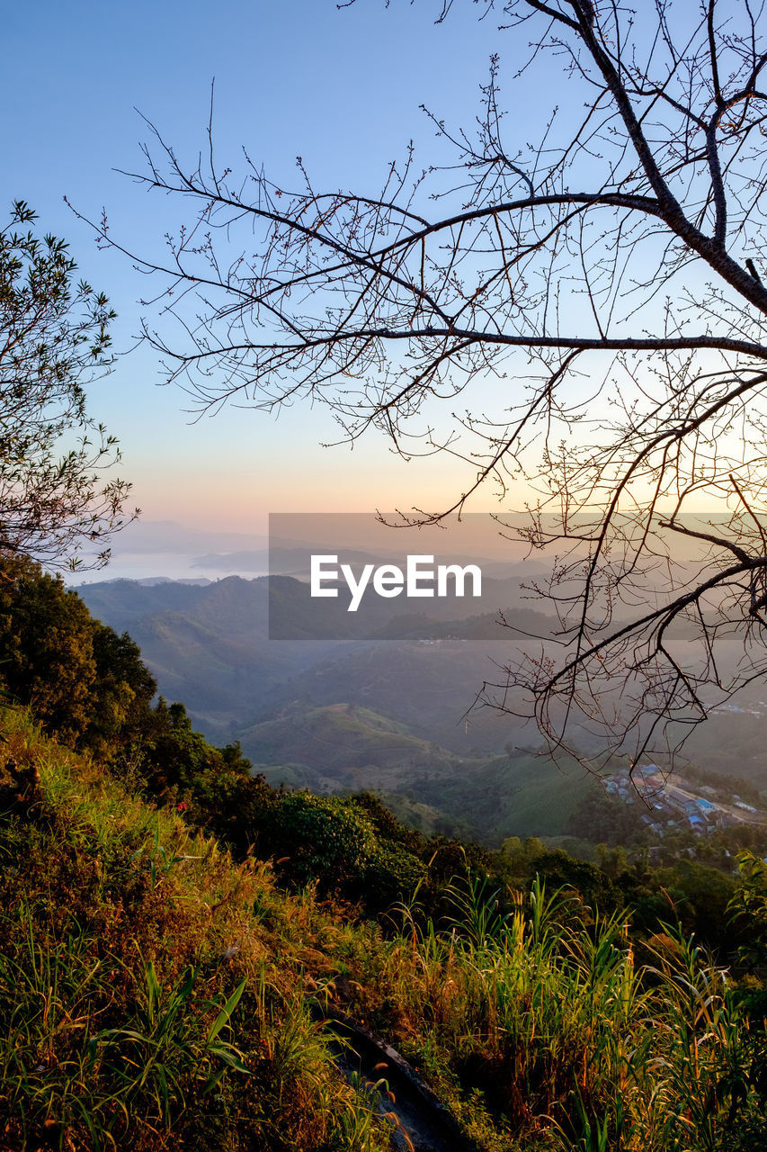 sky, scenics - nature, beauty in nature, plant, tree, tranquility, tranquil scene, mountain, environment, landscape, no people, nature, branch, mountain range, non-urban scene, idyllic, bare tree, cloud - sky, fog, sunset, outdoors