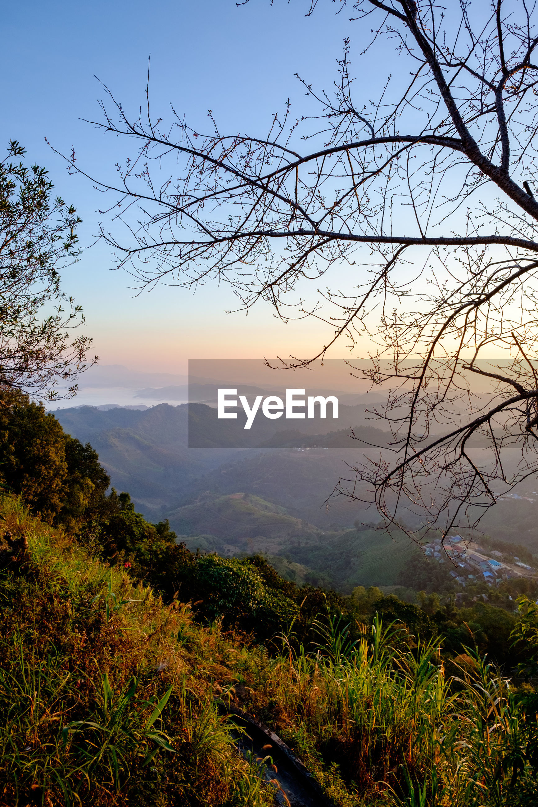 SCENIC VIEW OF TREE MOUNTAINS AGAINST SKY DURING SUNSET