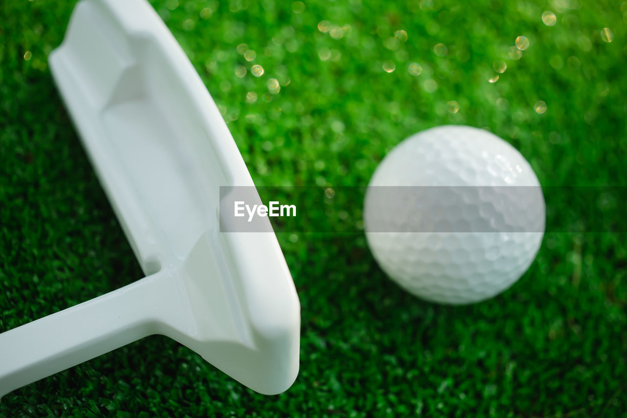 grass, green color, white color, no people, high angle view, green - golf course, golf, day, close-up, outdoors, golf course