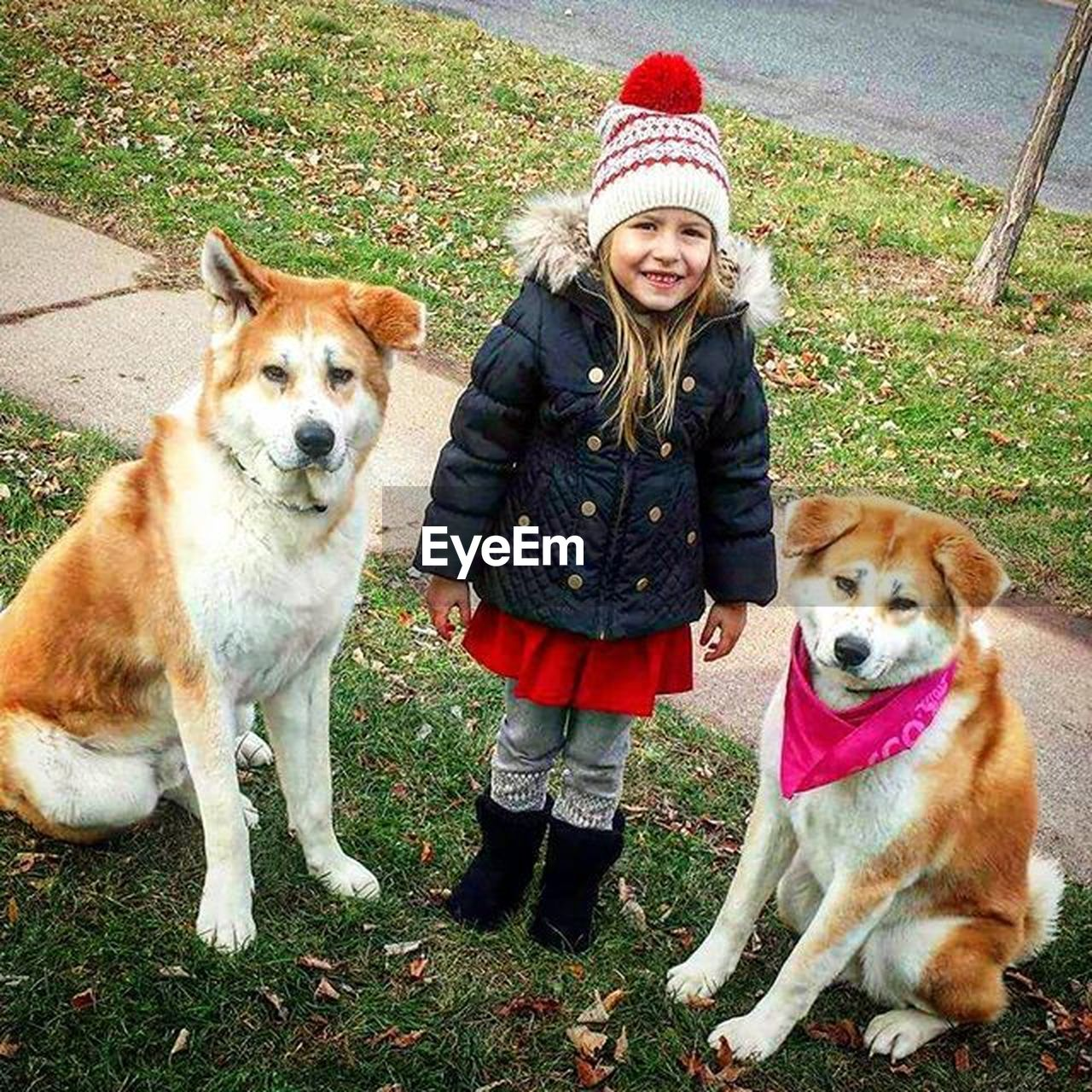 looking at camera, children only, pets, portrait, child, one girl only, warm clothing, dog, girls, smiling, one person, childhood, front view, one animal, autumn, jacket, scarf, knit hat, standing, people, outdoors, full length, domestic animals, winter, blond hair, happiness, animal themes, day, friendship, cold temperature, grass, mammal, adult