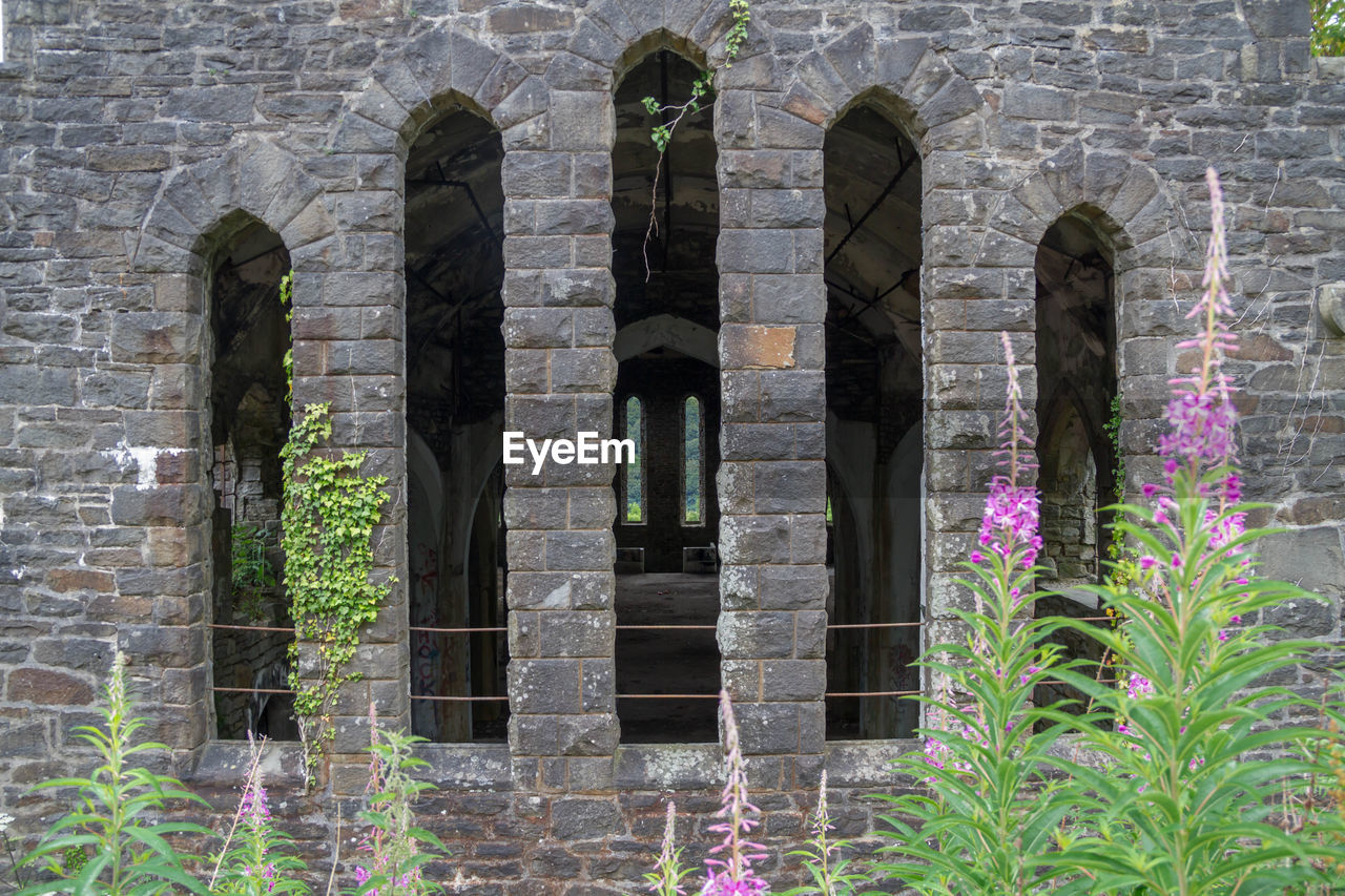 Flowering Plants Against Historic Building