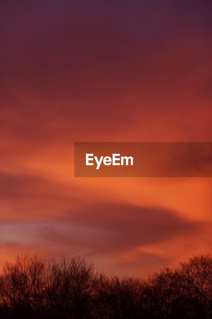 sky, sunset, beauty in nature, orange color, scenics - nature, tranquility, cloud - sky, tranquil scene, no people, nature, idyllic, plant, tree, silhouette, dramatic sky, non-urban scene, outdoors, environment, awe, romantic sky