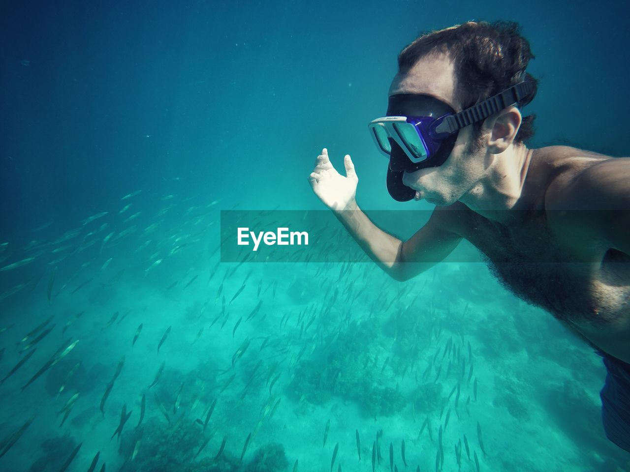 underwater, swimming, undersea, one person, leisure activity, sea, water, real people, lifestyles, blue, young adult, shirtless, snorkeling, young men, vacations, adventure, nature, scuba diving, beauty in nature, sea life, day, animal themes, outdoors, people