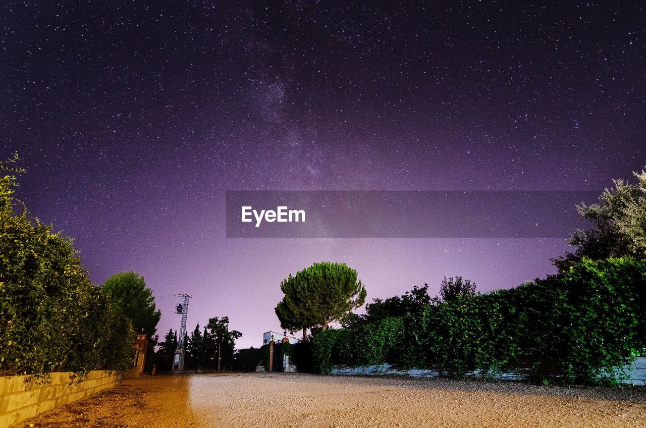Trees On Field Against Star Field At Night