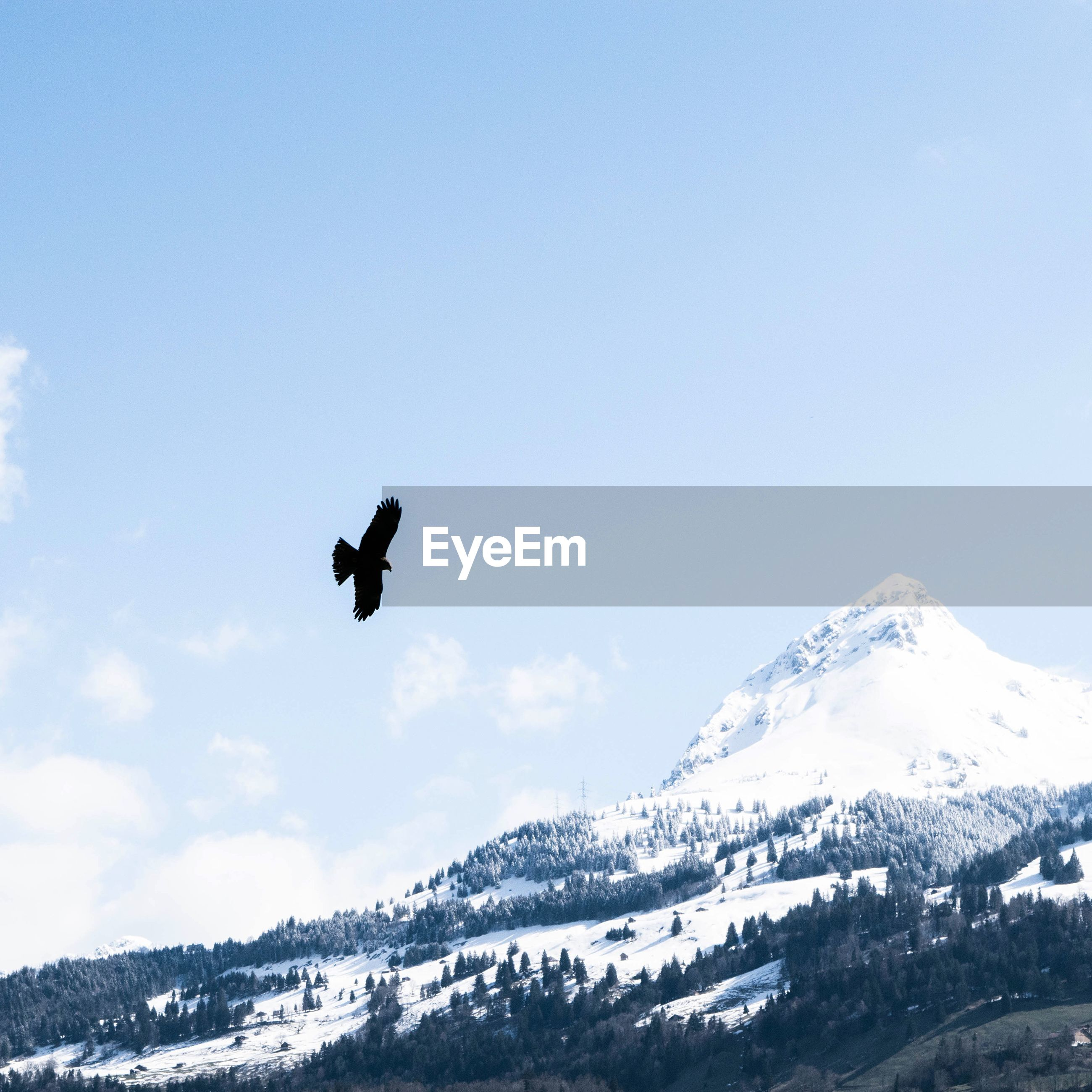 snow, winter, cold temperature, mountain, season, snowcapped mountain, mountain range, weather, scenics, mid-air, beauty in nature, tranquil scene, landscape, covering, sky, flying, tranquility, nature, low angle view, adventure