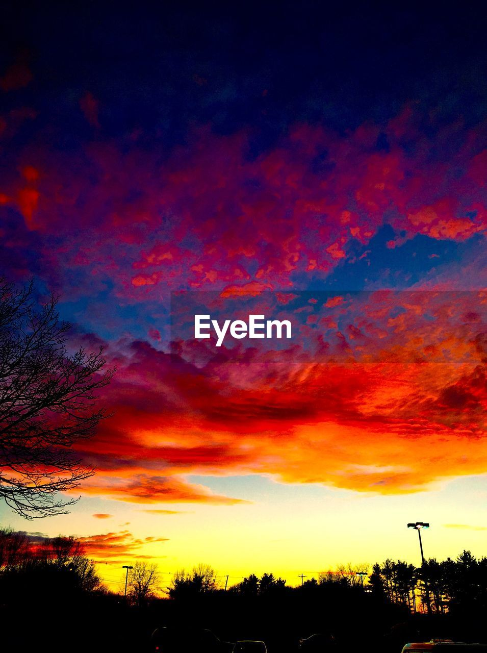 sunset, silhouette, orange color, beauty in nature, scenics, tree, sky, nature, tranquil scene, tranquility, dramatic sky, cloud - sky, no people, outdoors, low angle view