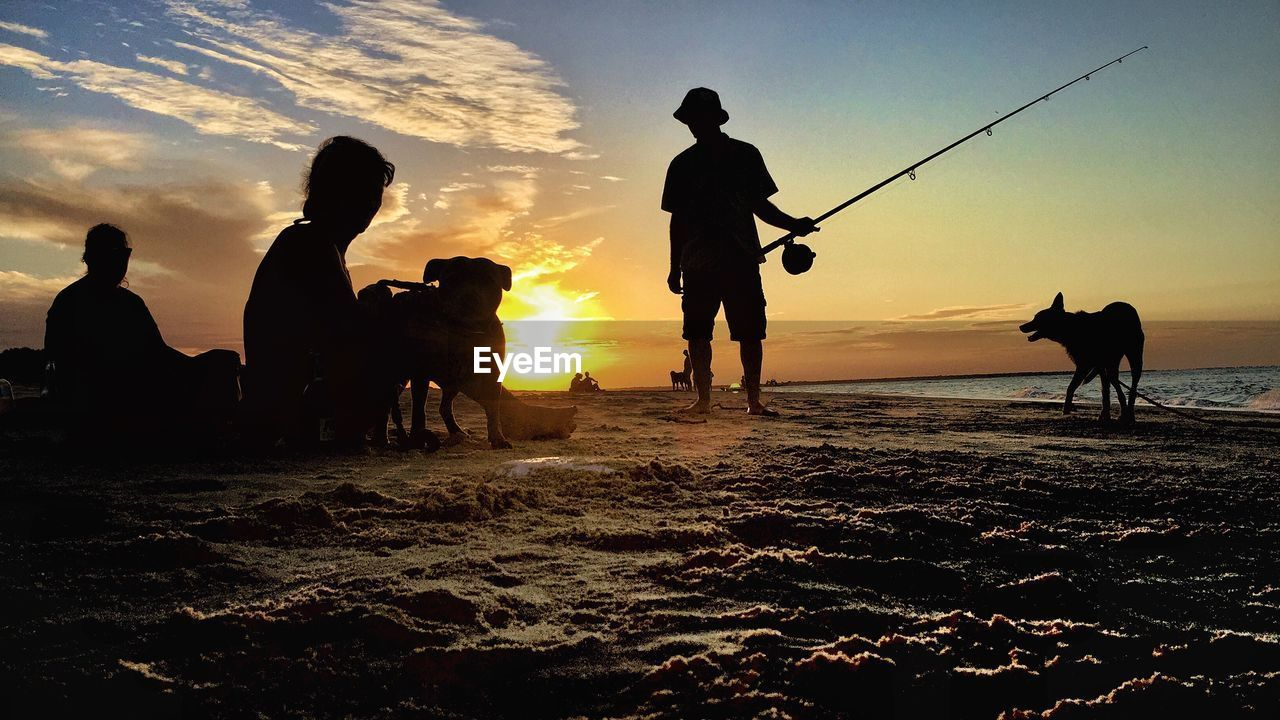 Silhouette people and dogs at beach during sunset