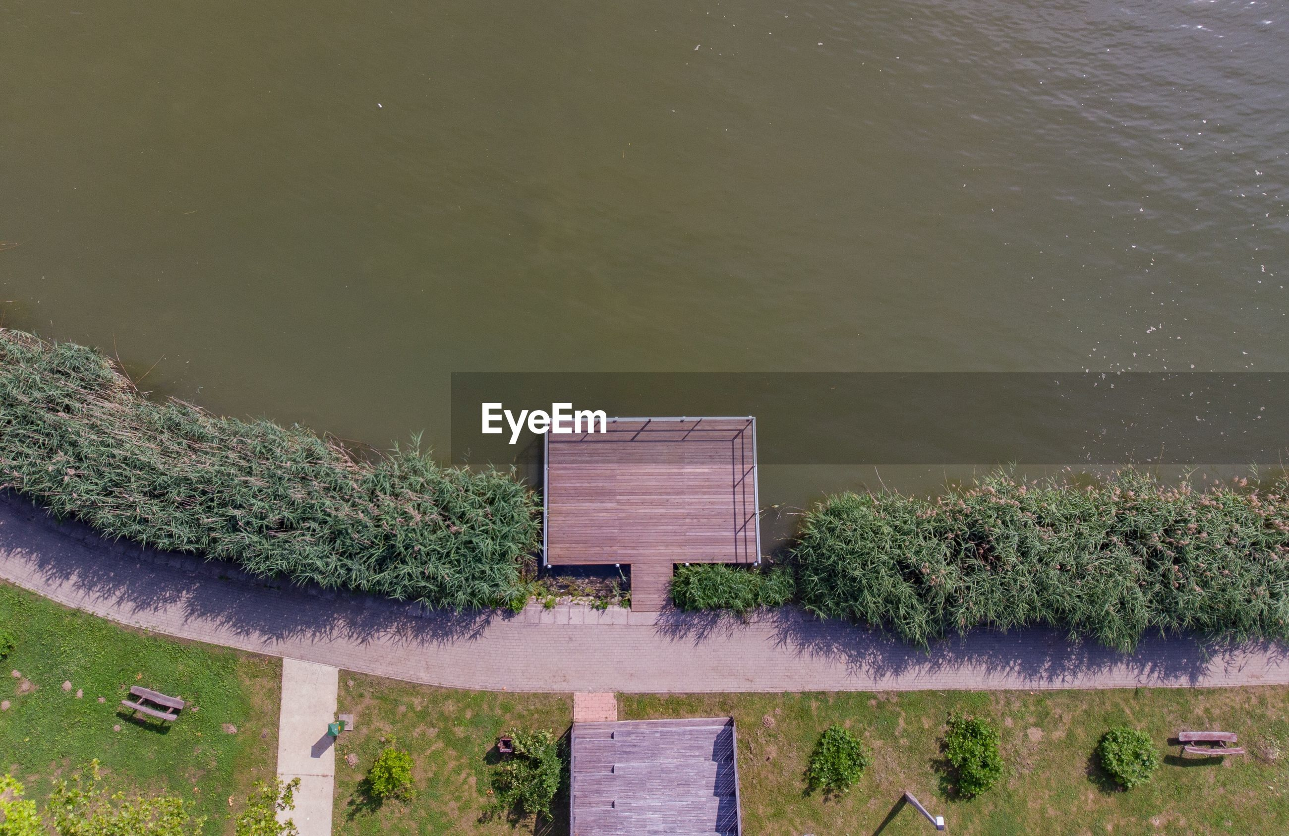 High angle view of plants floating on lake against building