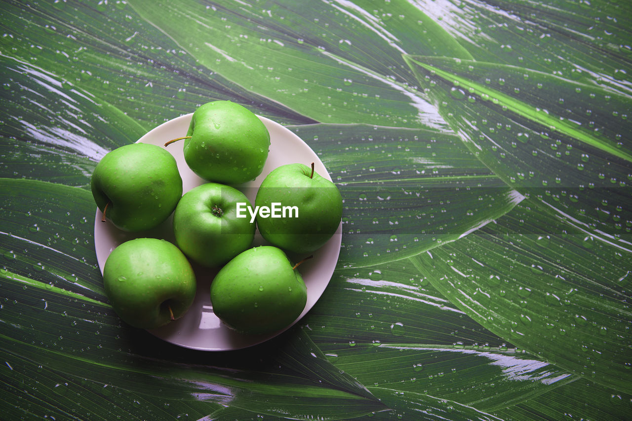 High Angle View Of Granny Smith Apples In Plate On Table