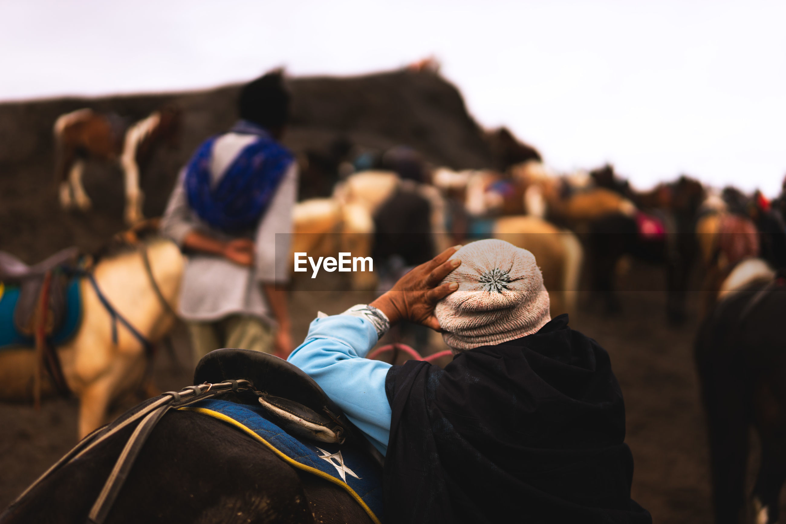 Rear view of man leaning on horse at mt bromo