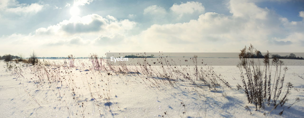 winter, sky, cold temperature, snow, cloud - sky, tranquil scene, tranquility, beauty in nature, nature, scenics - nature, water, environment, no people, non-urban scene, land, day, landscape, plant, tree