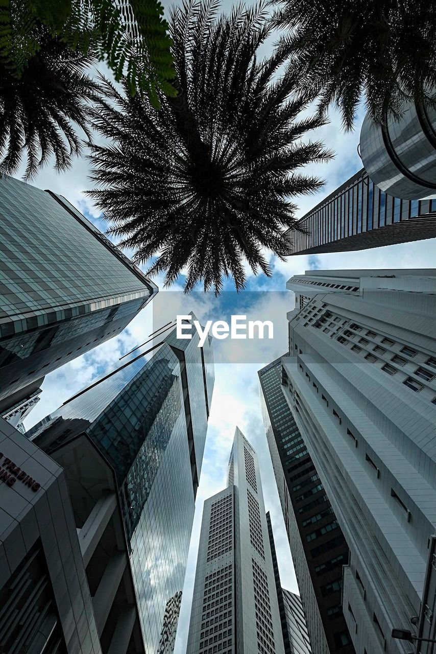 modern, architecture, skyscraper, city, growth, building exterior, tall, palm tree, no people, sky, cityscape, outdoors, day