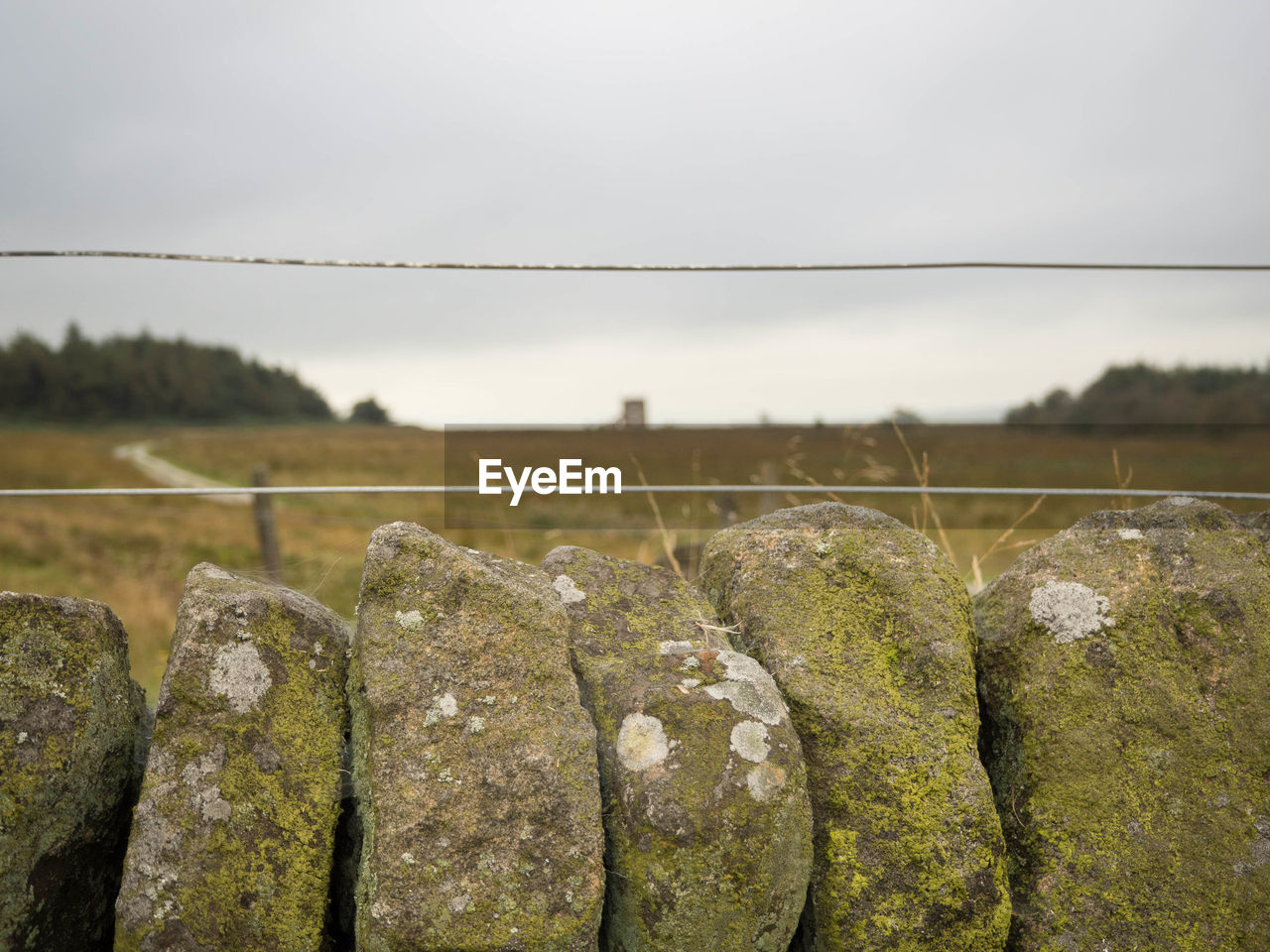 sky, nature, no people, solid, rock, plant, focus on foreground, rock - object, day, fence, barrier, tranquility, boundary, land, close-up, security, landscape, outdoors, protection, safety