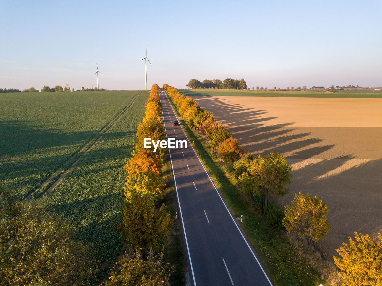 sky, environment, plant, transportation, landscape, road, nature, tree, field, the way forward, land, beauty in nature, day, direction, sign, scenics - nature, fuel and power generation, no people, marking, tranquil scene, diminishing perspective, outdoors, dividing line