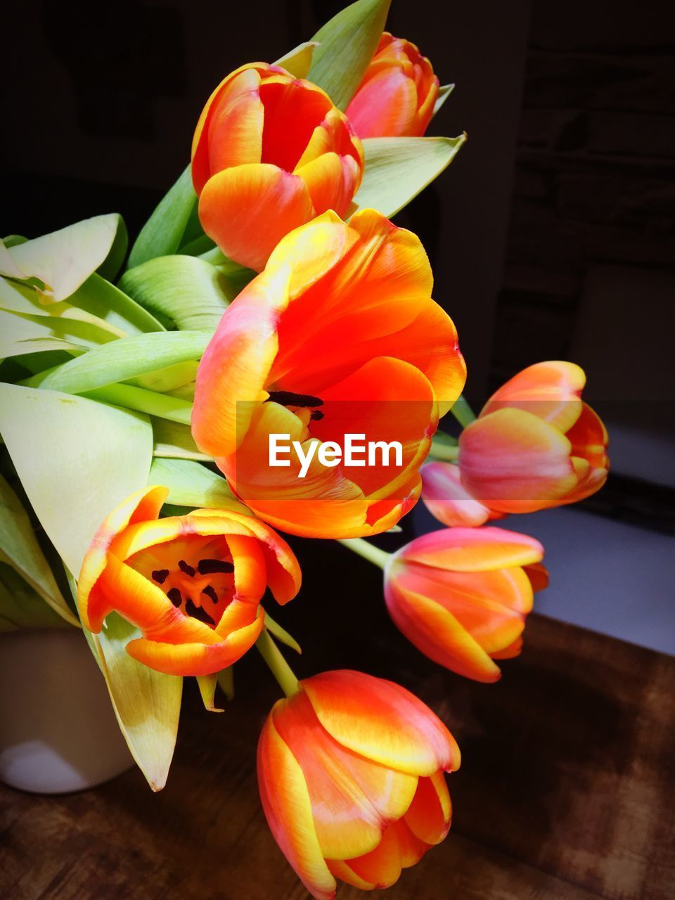 flower, petal, orange color, freshness, no people, flower head, beauty in nature, nature, fragility, plant, growth, blooming, close-up, indoors, day