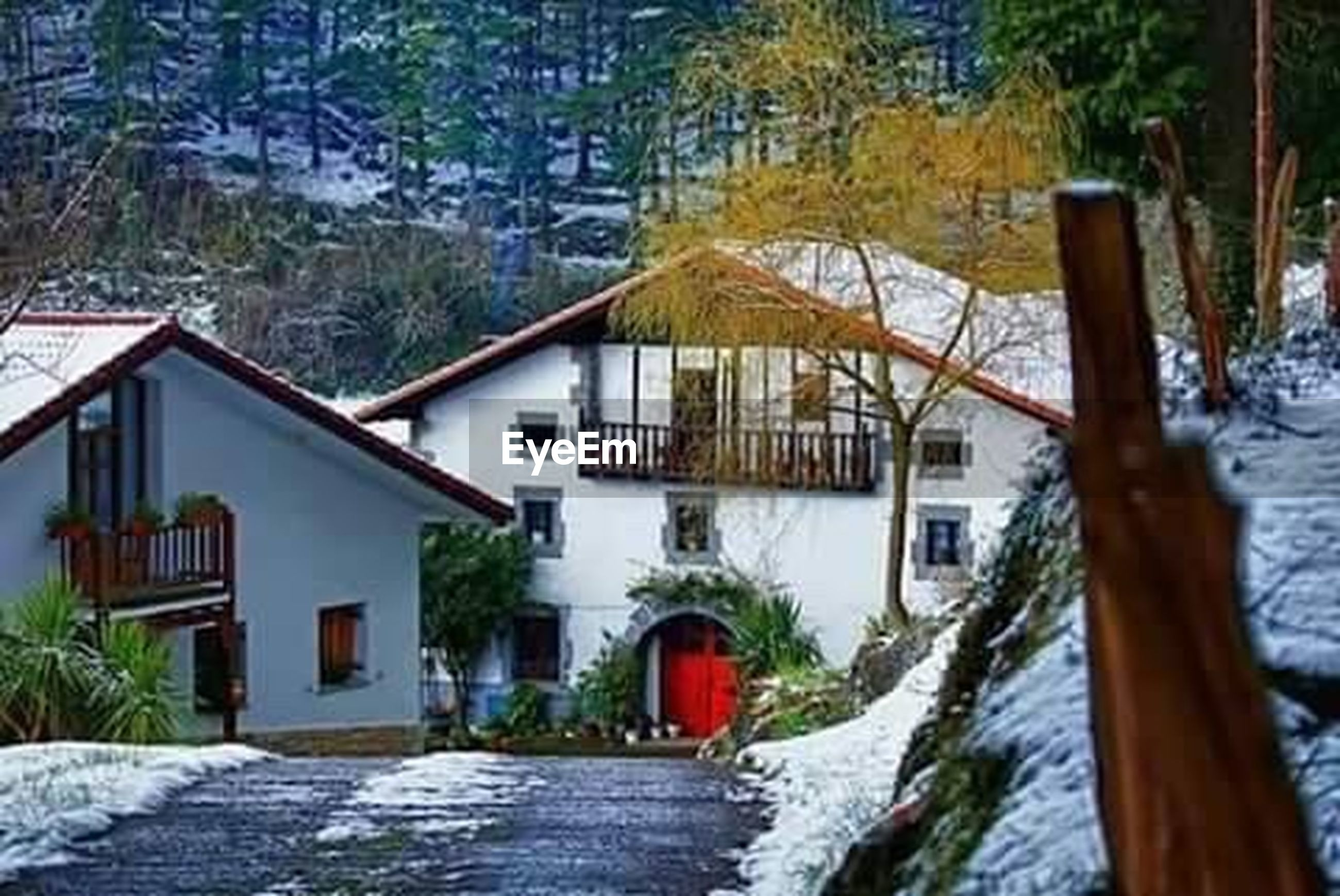built structure, architecture, building exterior, house, the way forward, tree, residential structure, residential building, winter, narrow, snow, street, cold temperature, outdoors, season, plant, no people, water, footpath, nature