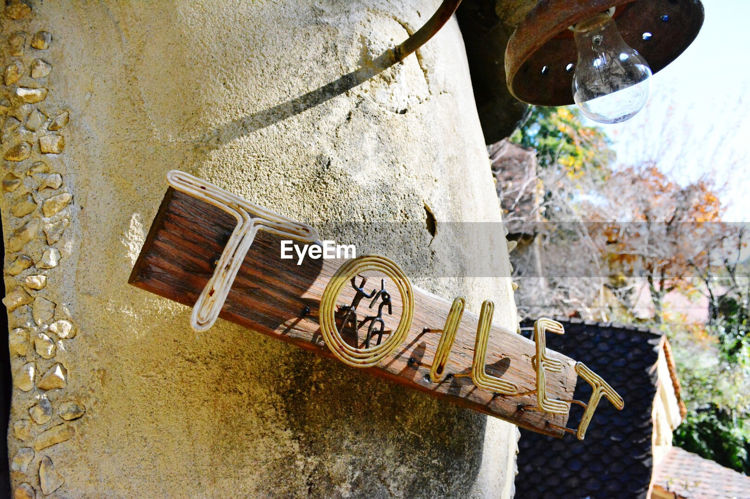 day, music, no people, musical instrument, nature, outdoors, close-up, plant, musical equipment, arts culture and entertainment, time, wood - material, focus on foreground, built structure, sunlight, still life, high angle view, wall - building feature, clock