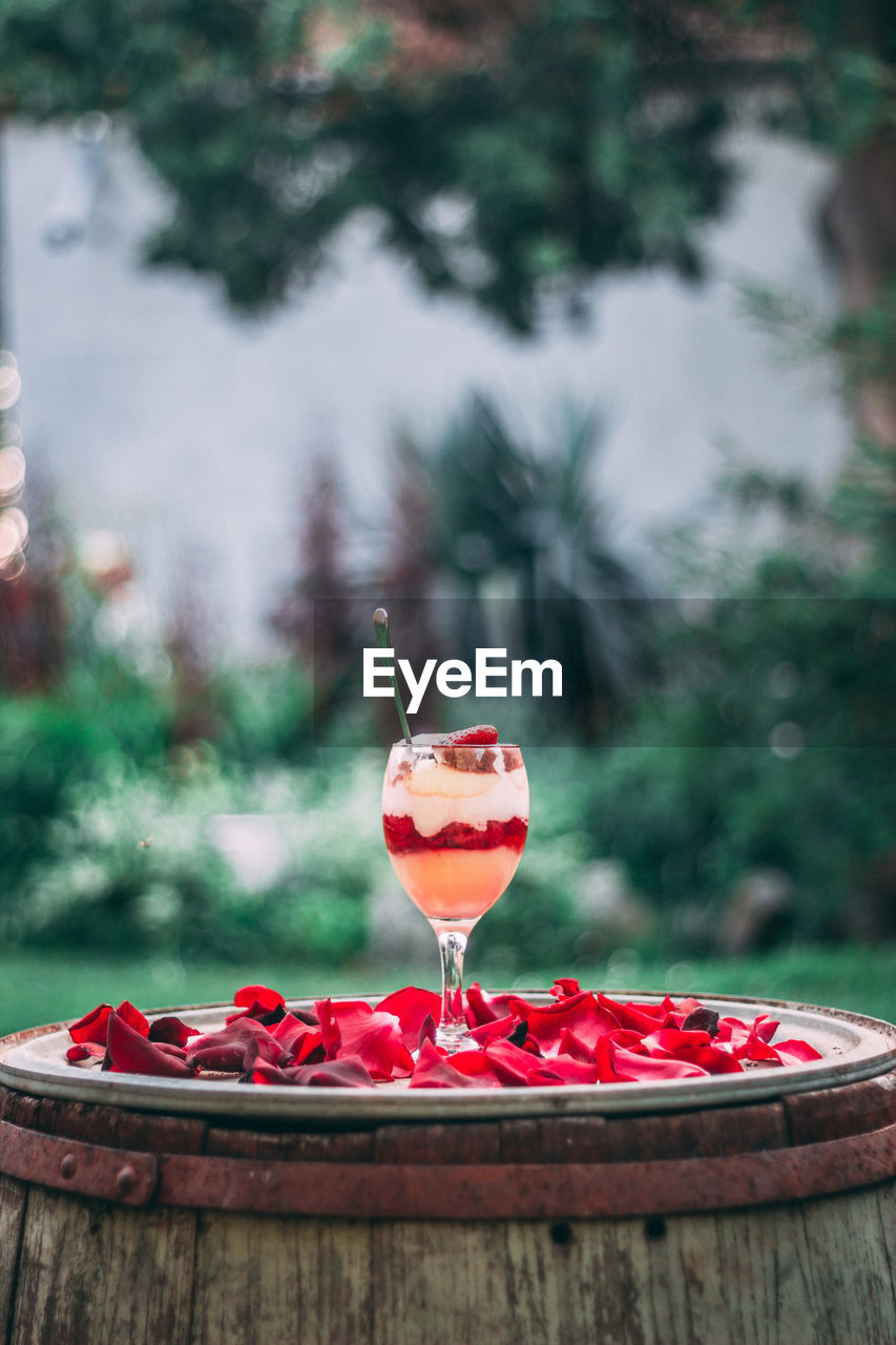 food and drink, freshness, red, glass, food, focus on foreground, healthy eating, drink, table, refreshment, day, drinking glass, fruit, alcohol, no people, wineglass, indulgence, close-up, household equipment, plant, cocktail, temptation, tray