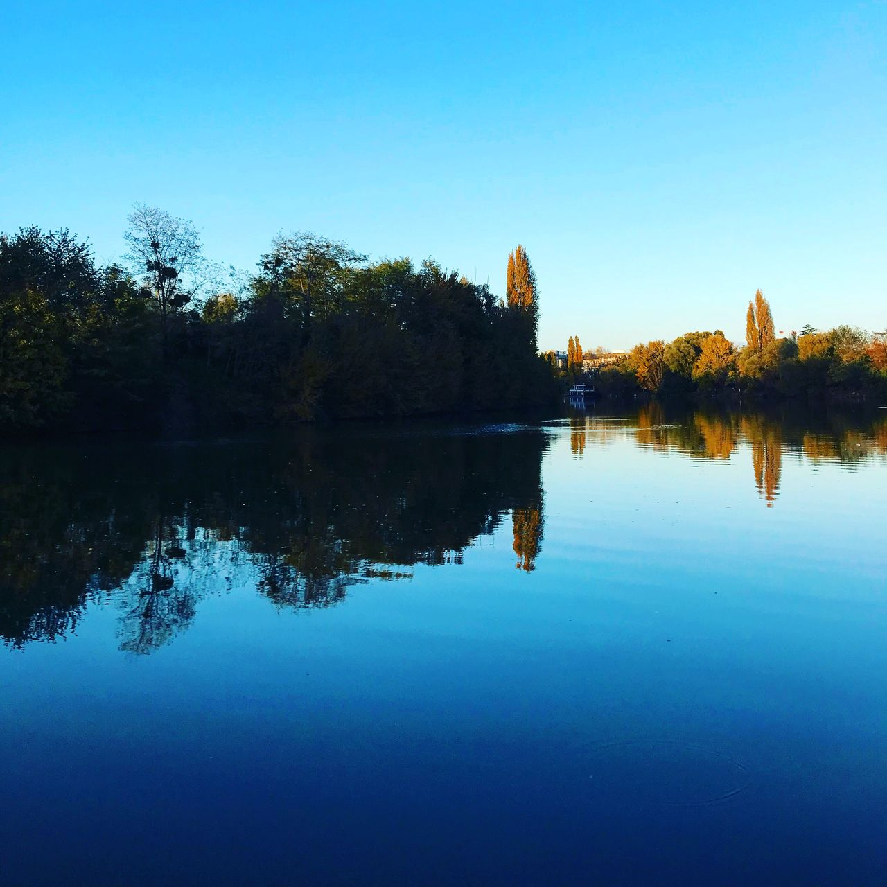 reflection, water, tree, lake, clear sky, tranquil scene, blue, nature, waterfront, beauty in nature, outdoors, scenics, no people, silhouette, tranquility, sky, symmetry, day