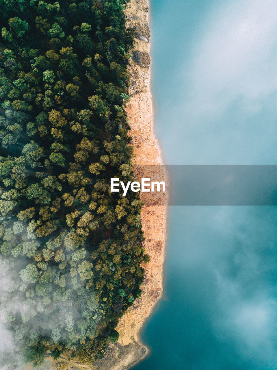 High Angle View Of Lake By Trees
